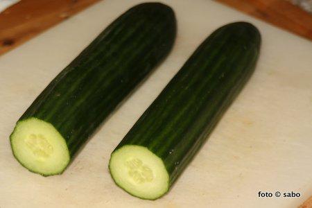 Gurken-Sandwich (Low Carb)