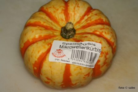 Gefüllter Mikrowellenkürbis (Low Carb / vegetarisch)